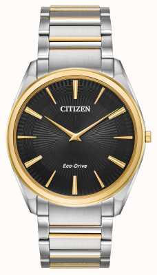 Citizen Mens veelkleurige tweekleurige, op zonne-energie werkende quartz analoog AR3074-54E