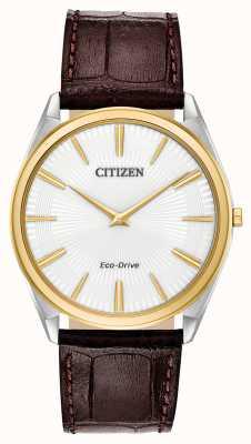 Citizen Stiletto | eco-drive voor heren | bruine leren band | witte wijzerplaat AR3074-03A